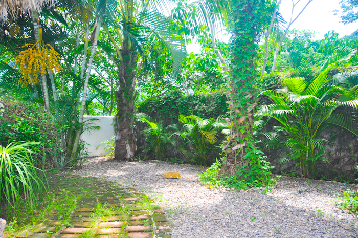 Casa_la_salamandra_Puerto_Vallarta_Real_Estate-35