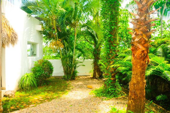 Casa_la_salamandra_Puerto_Vallarta_Real_Estate-36