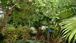 Casa-Maria-Bonita-Puerto-Vallarta-Real-Estate--11