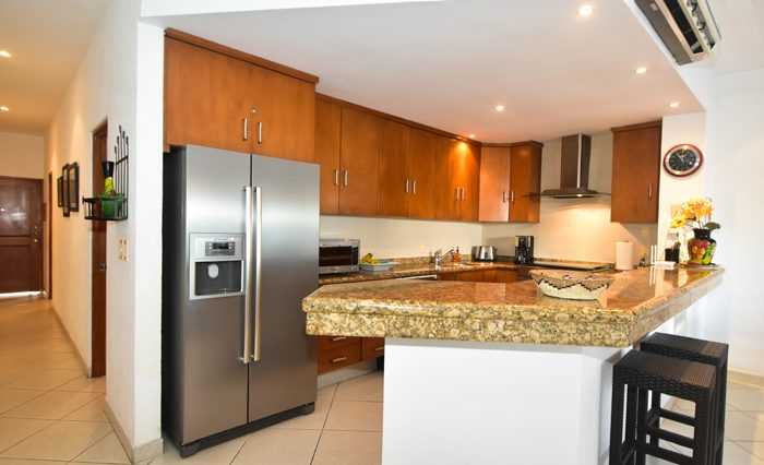 Copa_De_oro_Puerto_Vallarta_Real_estate--12