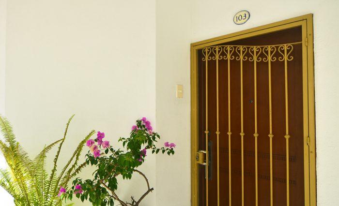 Copa_De_oro_Puerto_Vallarta_Real_estate--24