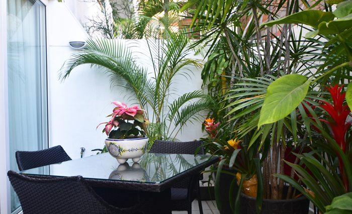 Copa_De_oro_Puerto_Vallarta_Real_estate--4