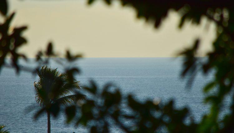Loma_Del_Mar_C_2_Puerto_Vallarta_Real_estate--30