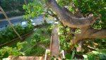 Loma_Del_Mar_C_2_Puerto_Vallarta_Real_estate--33