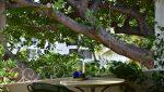 Loma_Del_Mar_C_2_Puerto_Vallarta_Real_estate--4