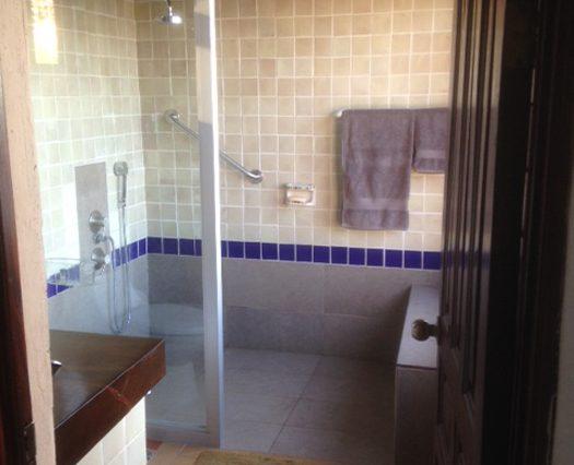 Master Bathrm Shower