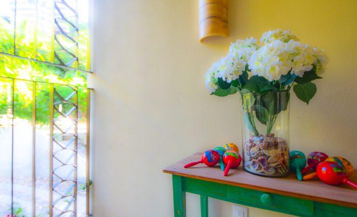 V-Conchas -Chinas-Puerto-Vallarta-Real-Estate-PV-Realty--48