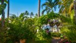 Isla-Iguana-35-Puerto-Vallarta-Real-Estate-PV-Realty--34