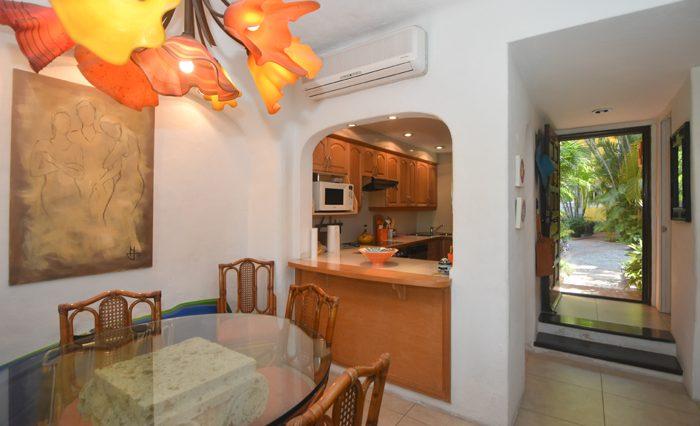Isla-Iguana-35-Puerto-Vallarta-Real-Estate-PV-Realty--7 - copia